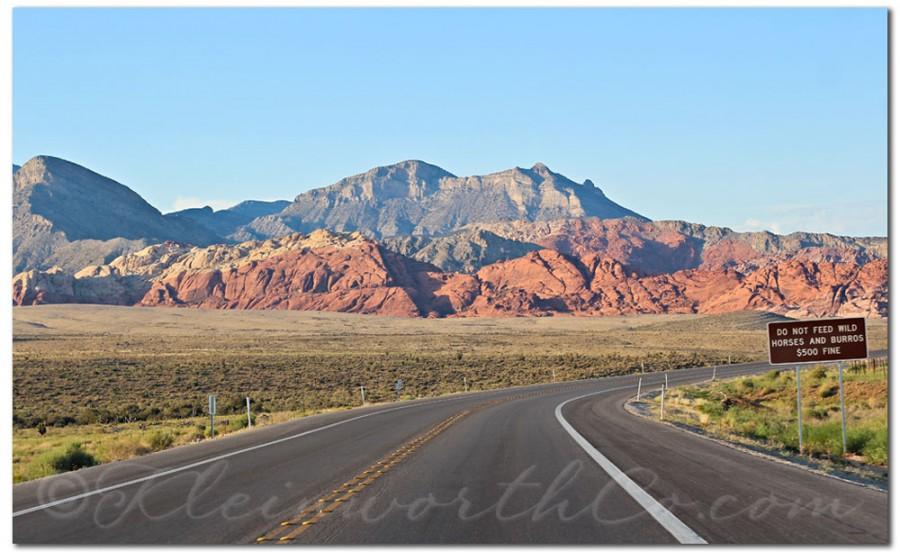Scavenger Hunt, Unedited, SOOC, Red Rock Canyon, Las Vegas, NV desert