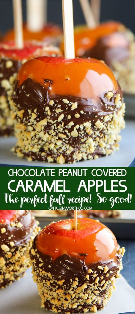 Chocolate Peanut Covered Caramel Apples