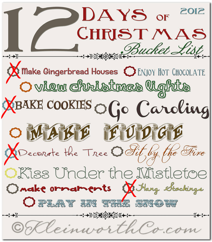 12 Days of Christmas- Holiday Bucket List