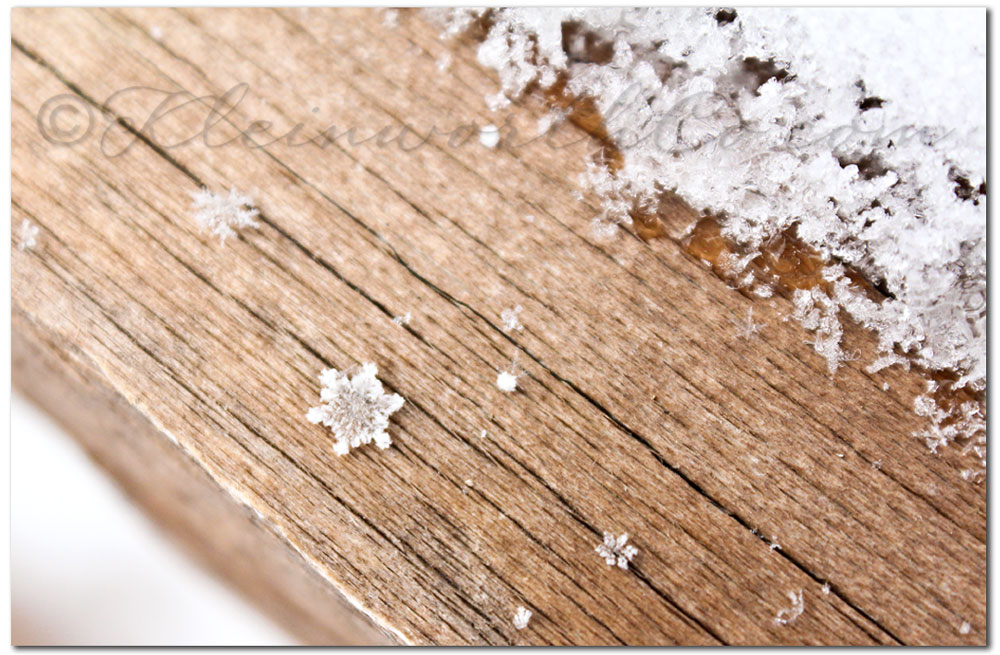 snowflake images, The Miracle of One Snowflake