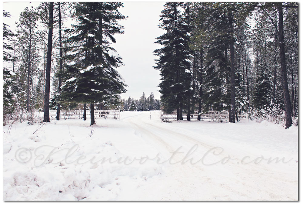 Scavenger Hunt ~ 2-3 2013, left, snowy scene, snow covered road, left turn
