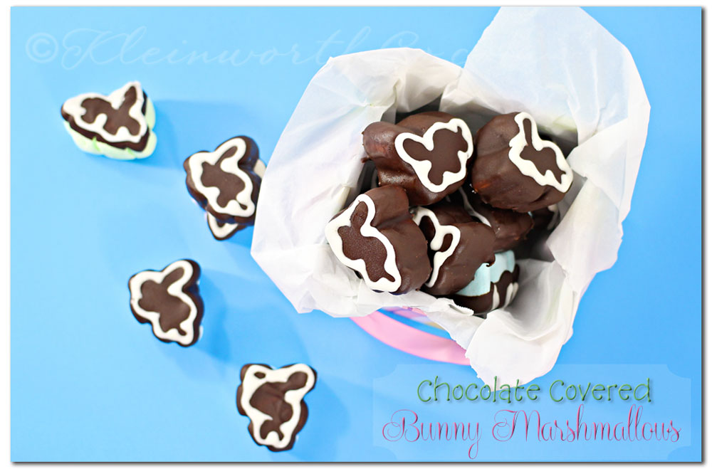 Chocolate Covered Bunny Marshmallows