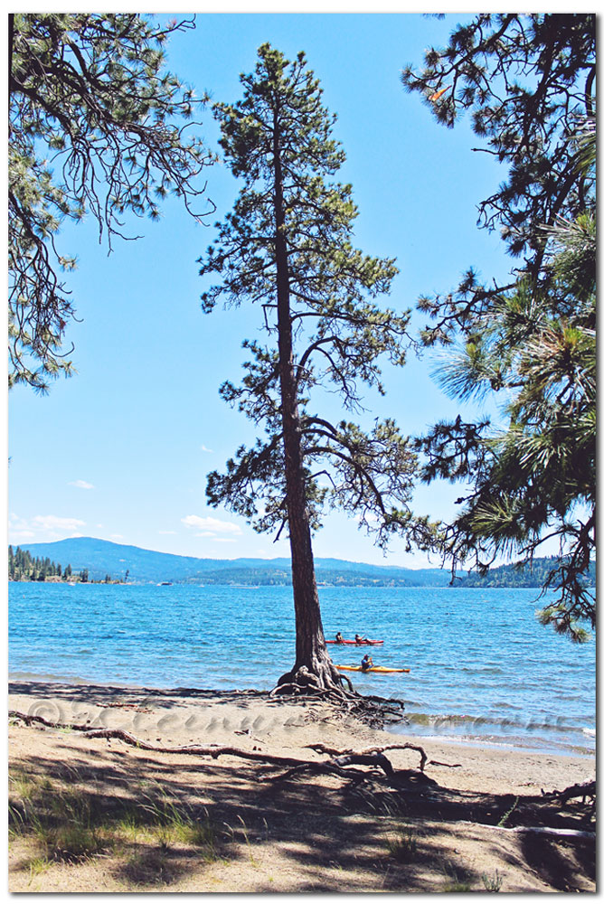 Scavenger Hunt Sunday August 25 2013, recreation, Lake Coeur d'Alene, northern Idaho