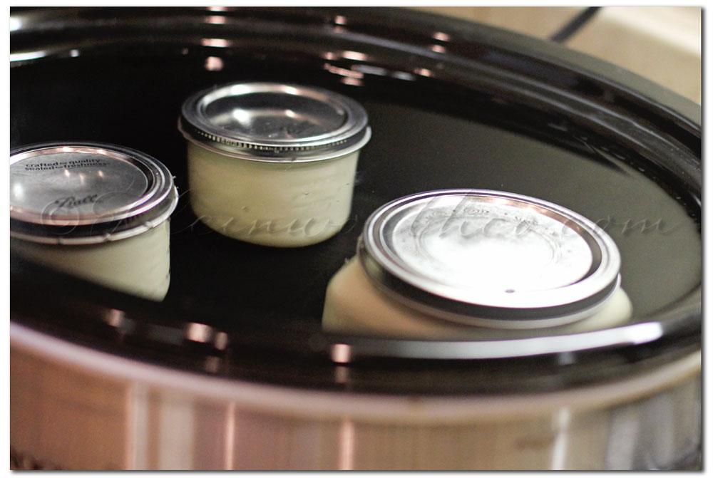 Crock Pot Dulce de Leche dessert dip