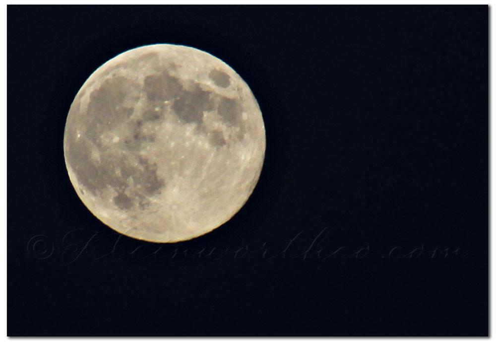 Project 52 Week 34, Blue Moon