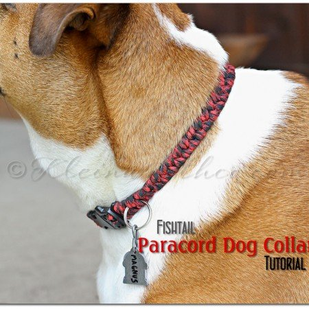 Fishtail Paracord Dog Collar tutorial