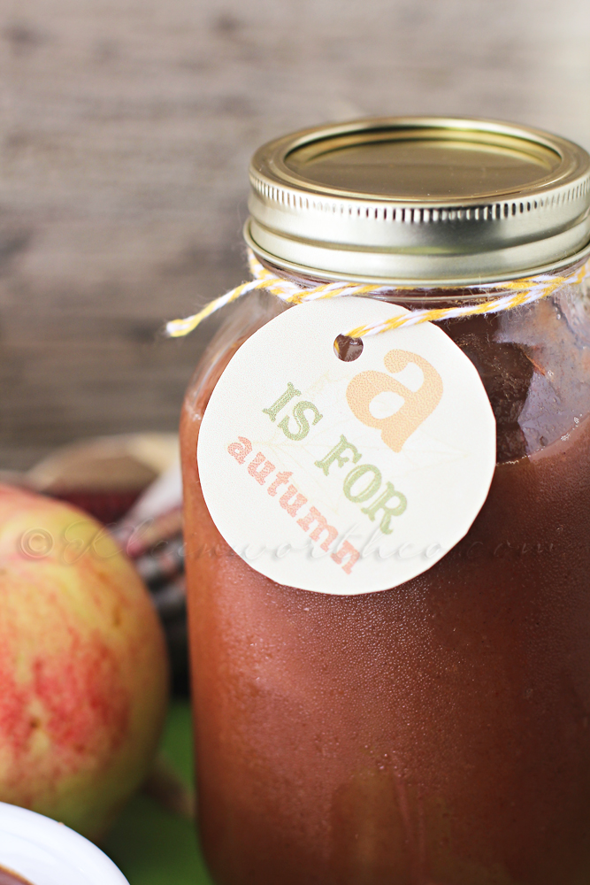 Crock Pot Cinnamon & Brown Sugar Applesauce
