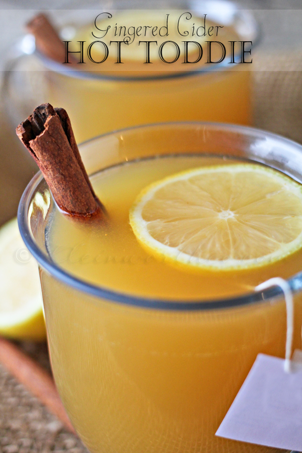 Gingered Cider Hot Toddie, 10 Best Holiday Drink Recipes