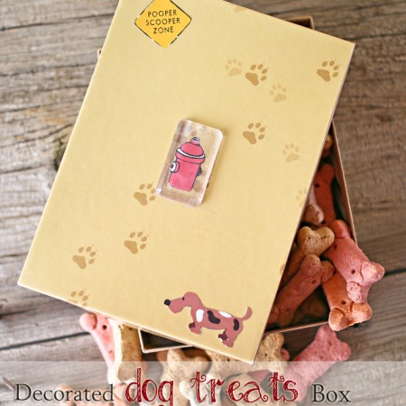 Decorated Dog Treats Box