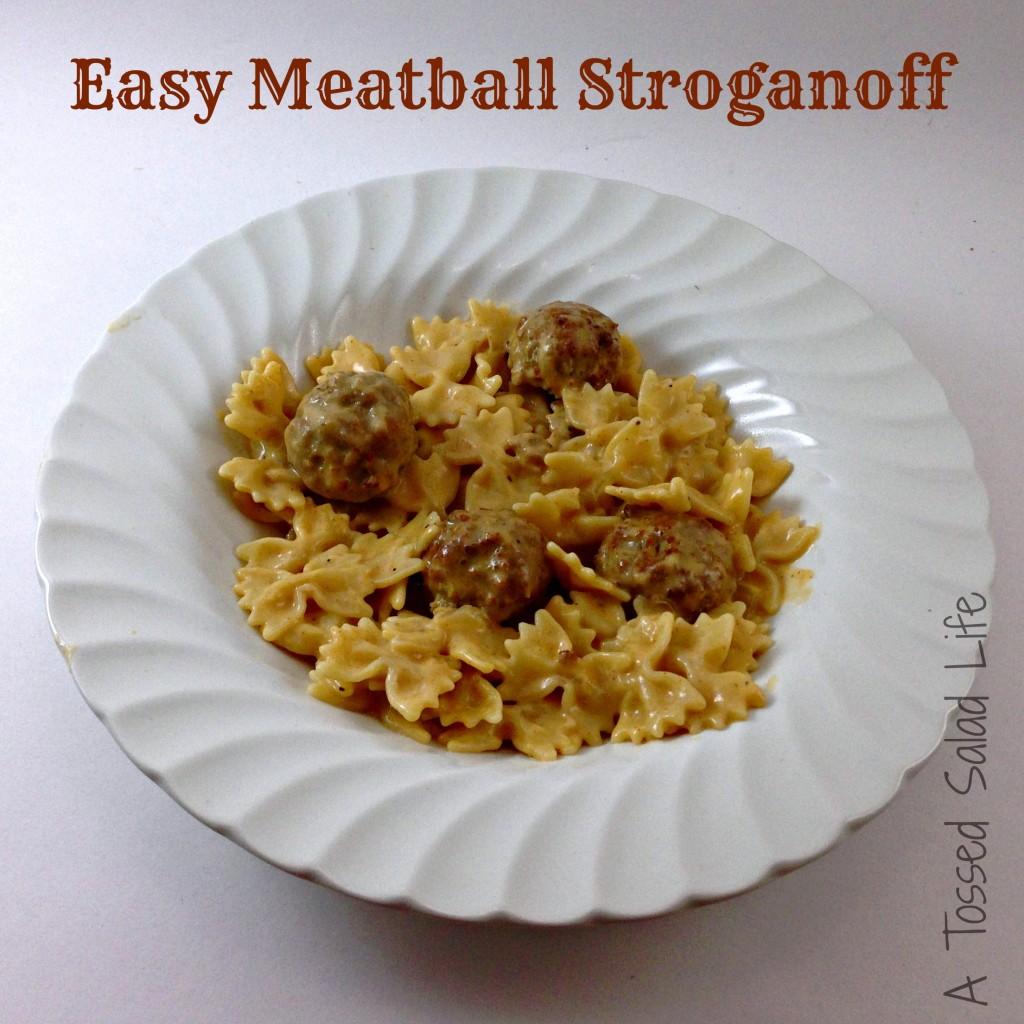 Meatball-Stroganoff-Title-1024x1024