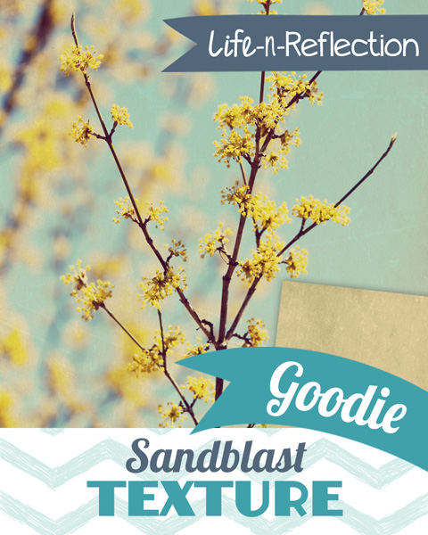 lnr_preview_goodie_sandblast 600