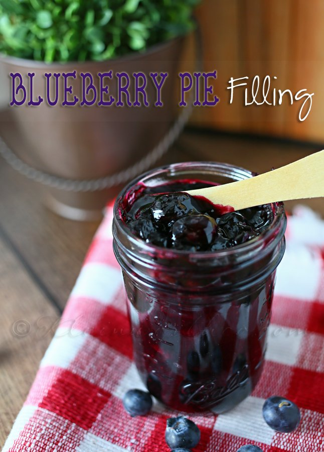 Blueberry Pie Filling from www.kleinworthco.com
