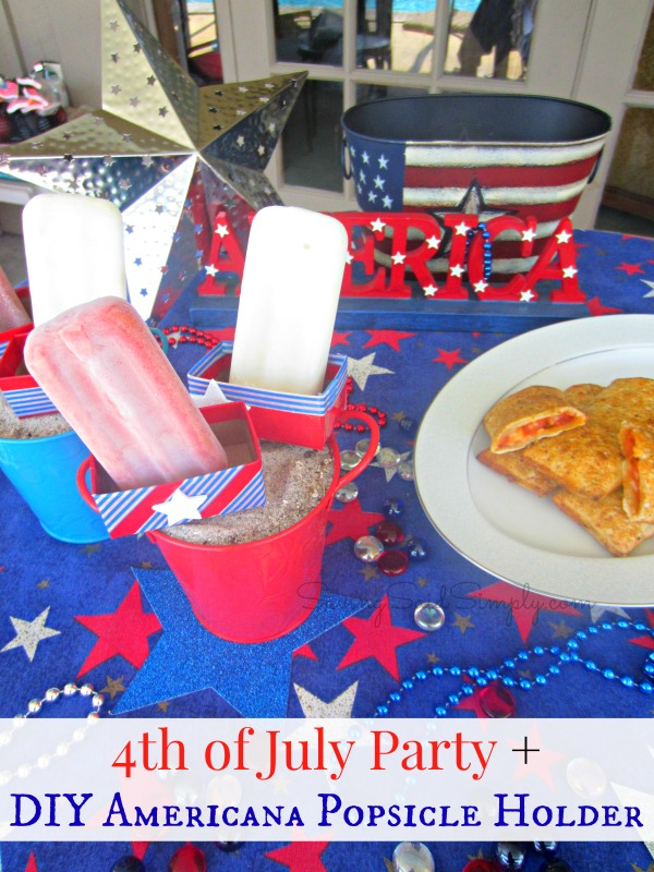 4th of July Party and Popsicle Holder