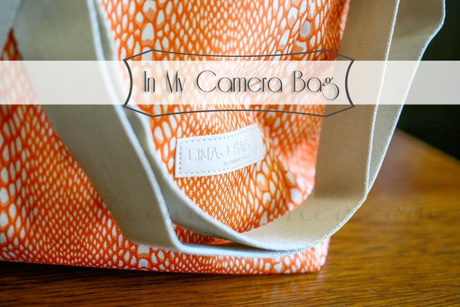 In My Camera Bag {LinaJake Bag}