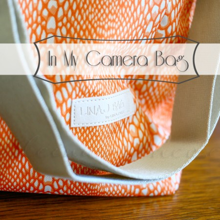 In My Camera Bag {LinaJake Bag}