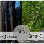 Camera Phone Tips – Urban Jungle vs. Green Jungle