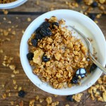 Blueberry Granola Cereal