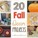 20 Fall Decor Projects