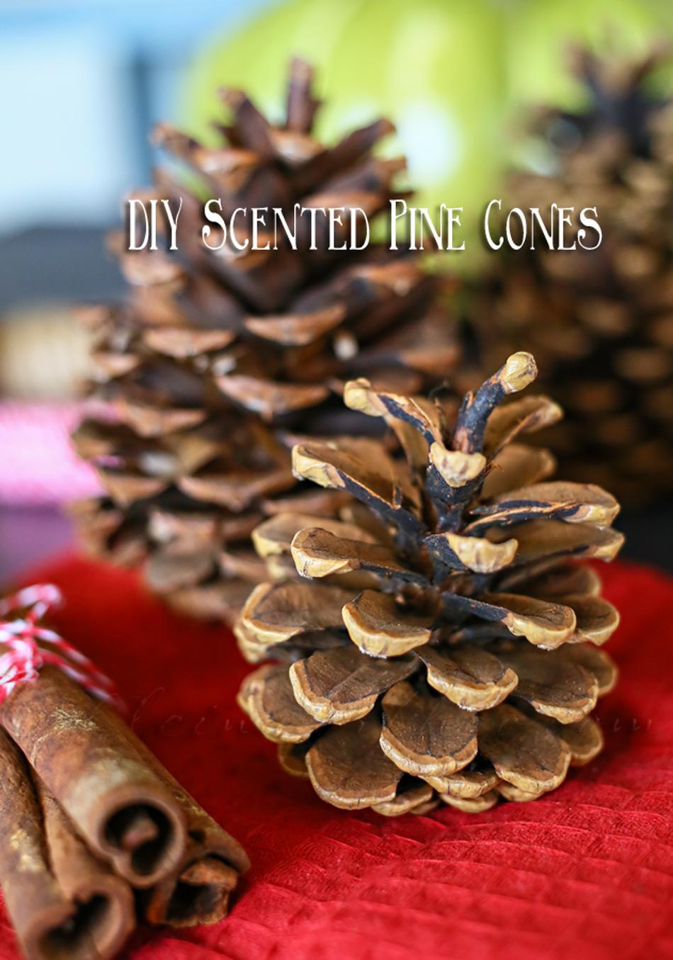 Diy Scented Pine Cones Kleinworth Co