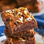 Toasted Coconut Flourless Brownies