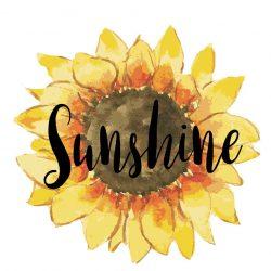 Sunshine free digital files