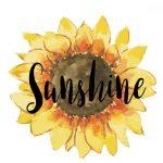 Sunshine Digital Wallpaper : Free Download