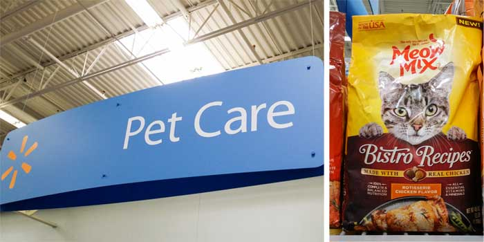 Where to buy- Caring for Cats : How to Spoil a Cat
