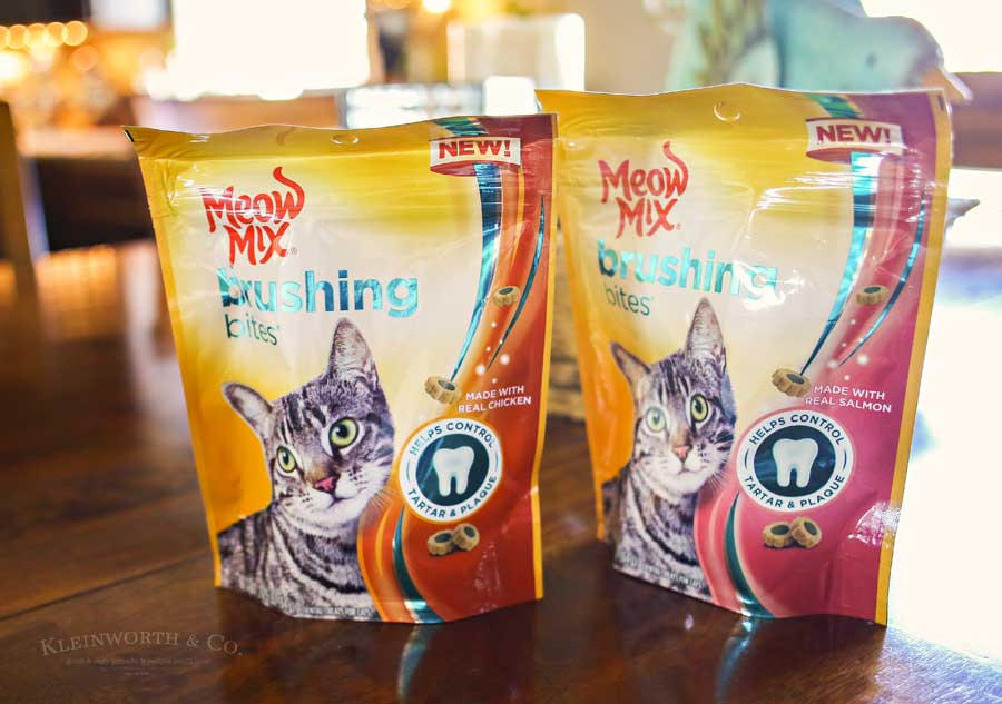 Best Treats for Cats