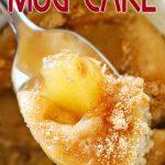 Best Apple Pie Mug Cake