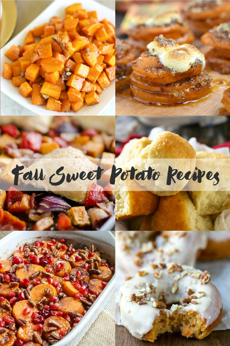 Fall Sweet Potato Recipes