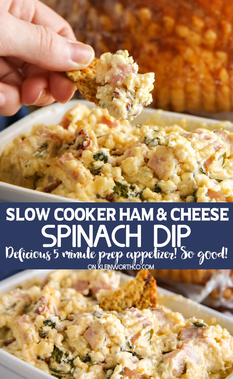 Slow Cooker Ham & Cheese Spinach Dip appetizer recipe