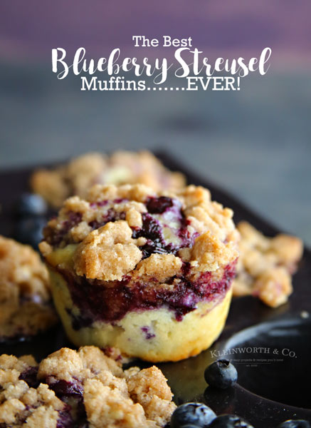 Best Blueberry Streusel Muffins