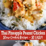 Slow Cooker Thai Pineapple Peanut Chicken