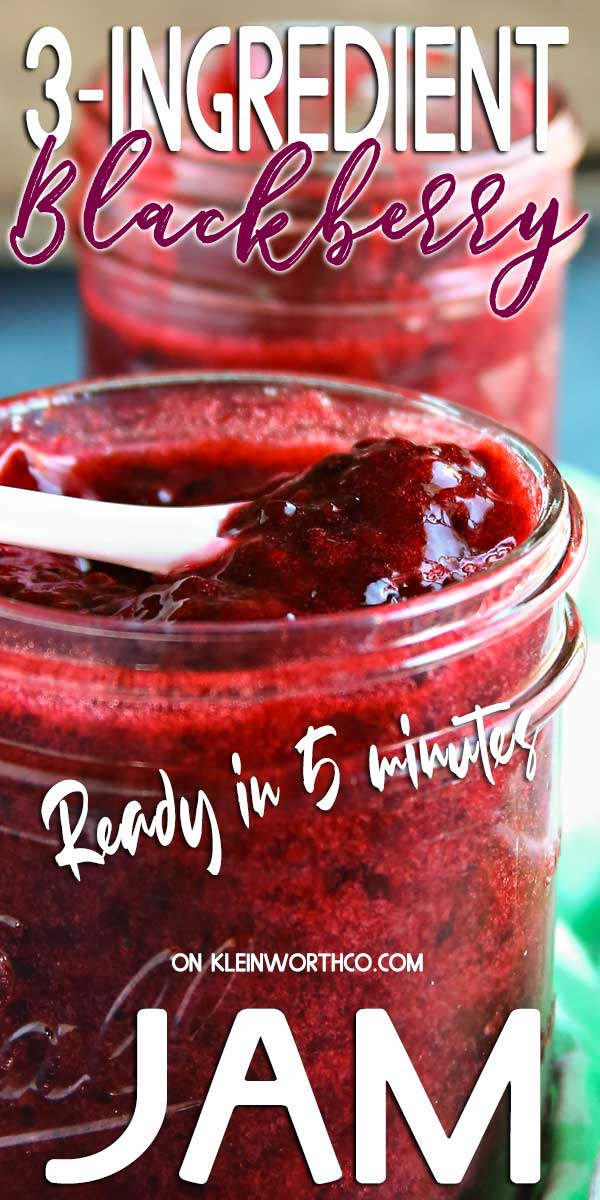 3-Ingredient Blackberry Jam