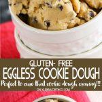Gluten-Free Eggless Cookie Dough