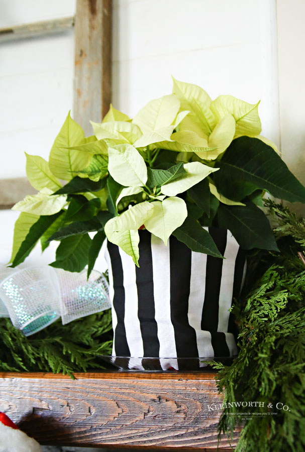black and white christmas decor - White Christmas Flower Decorations