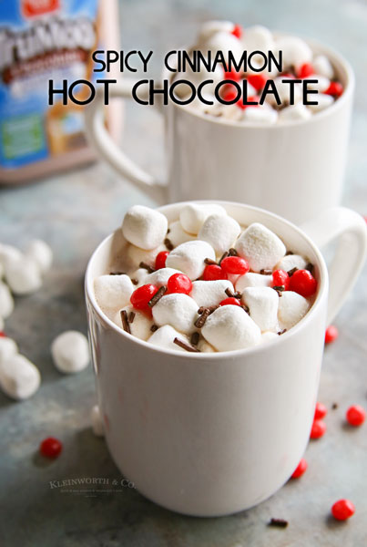 Spicy Cinnamon Hot Chocolate