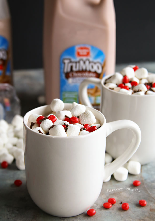 TruMoo hot chocolate