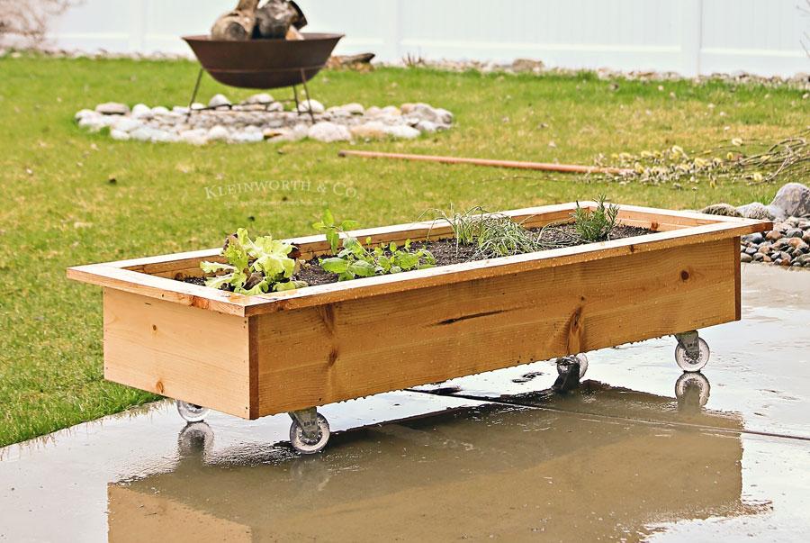 DIY Rolling Planter Box - small space gardening