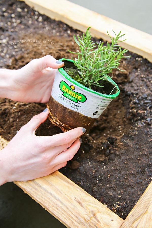 DIY Rolling Planter Box for Bonnie Plants