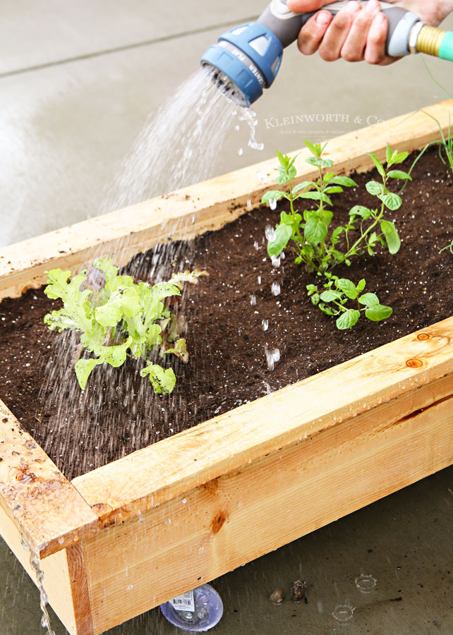 DIY Rolling Planter Box - Container Gardening