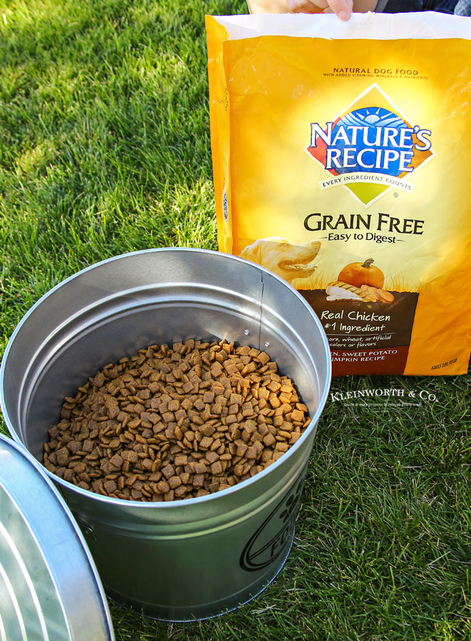 how to store dog food