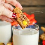 chocolate chipReese's Peanut Butter Cookie Dippers