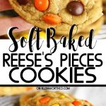 Soft Baked Reese's Pieces Cookies