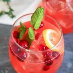 Alcoholic Holiday Party Punch