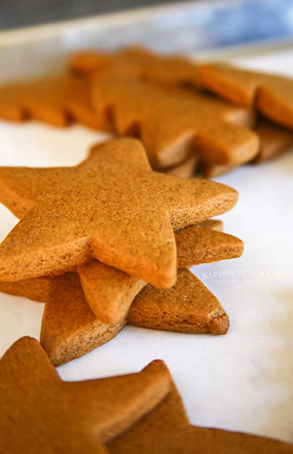 Unfrosted Gingerbread Stars