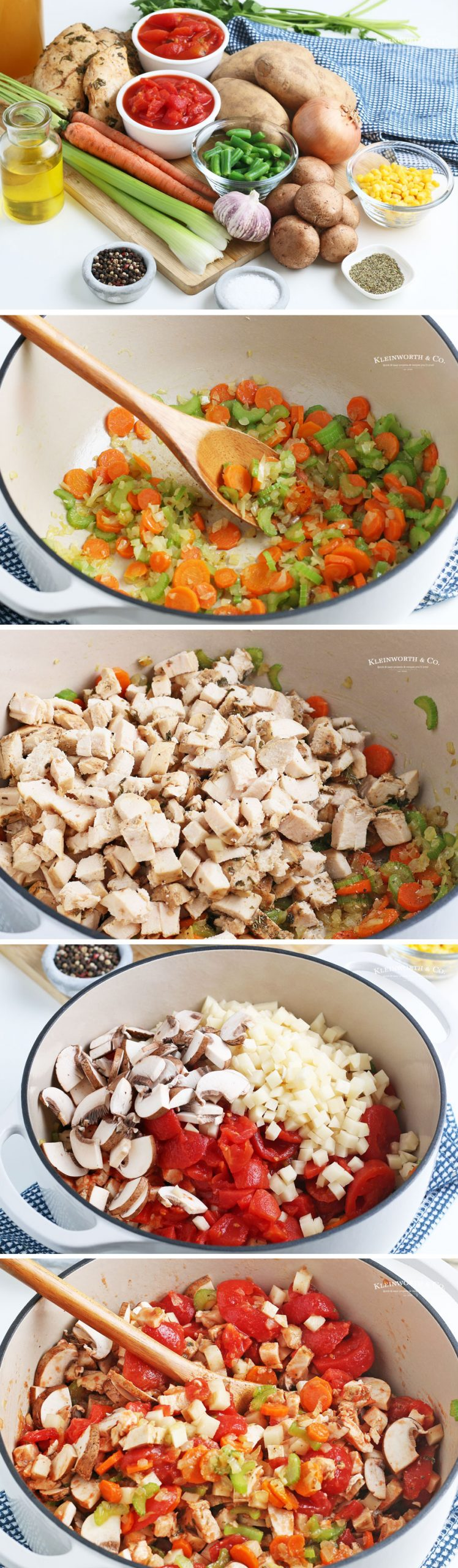 how to make Chicken Vegetable Soup