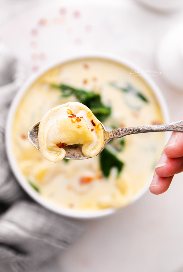 instant pot pasta soup